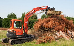 storm cleanup companies